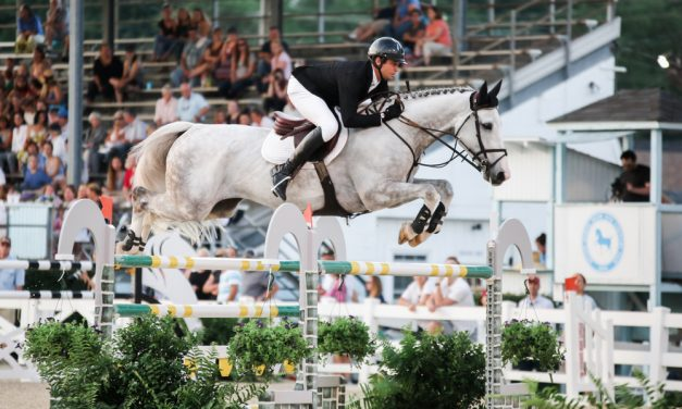 The Big Problem with Equestrian Sport…